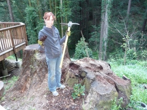 Beth with grub ax and stumps
