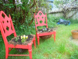 Two red chairs in a garden with plants growing from seats